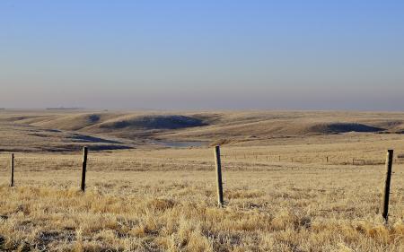 Фото поле, забор, пейзаж