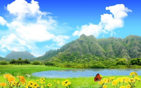 Фото природа, трава, цветы, одуванчики