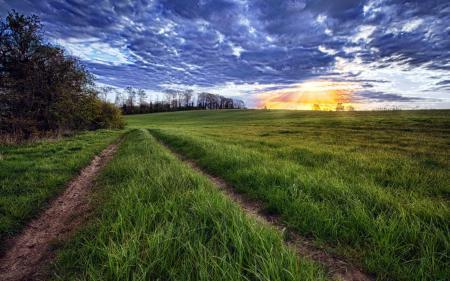 Фотографии поле, дорога, небо, пейзаж