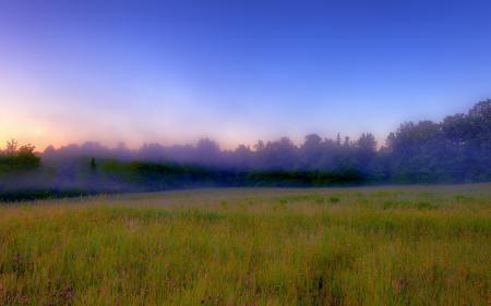 Фотографии поле, туман, природа, пейзаж