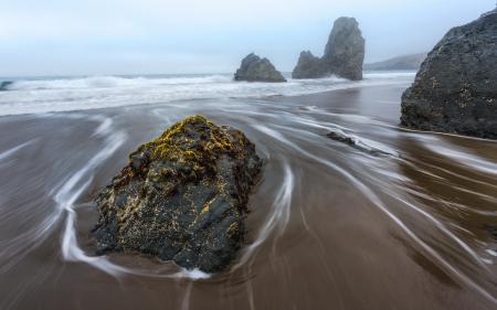 Картинки море, камни, мох, пейзаж