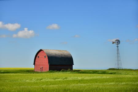 Заставки Канада, Альберта, лето, ферма