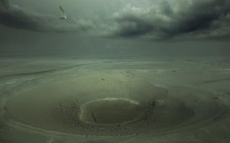 Фото птица, пустыня, кратер