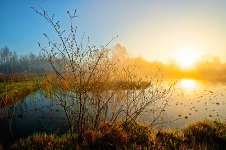 Обои природа, утрос, рассвет, солнце