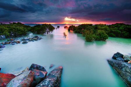 Заставки небо, закат, море, кусты