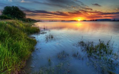 Обои закат, озеро, трава, рябь