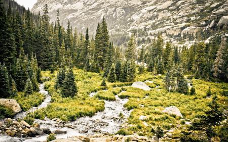Заставки пейзаж, природа, горы, лес