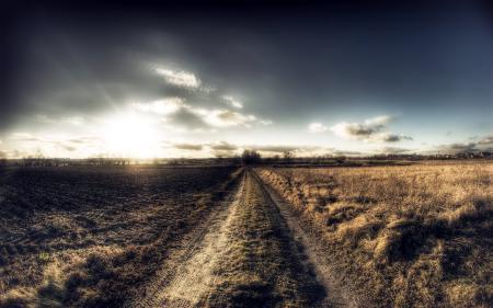 Фотографии поле, дорога, утро, природа
