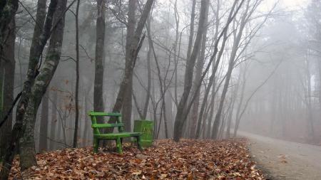 Фото осень, дорога, скамья, листья