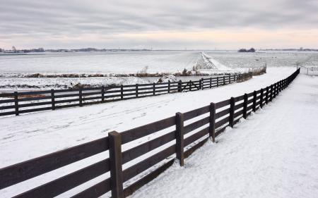 Фото зима, дорога, забор