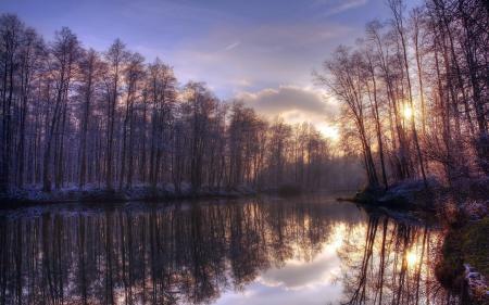 Фото утро, озеро, деревья, природа
