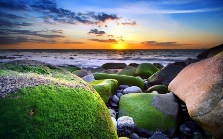 Обои море, закат, камни, мох