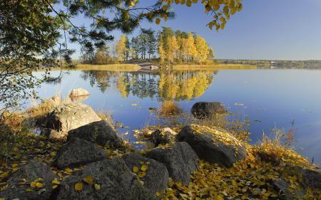 Обои осень, озеро, деревья