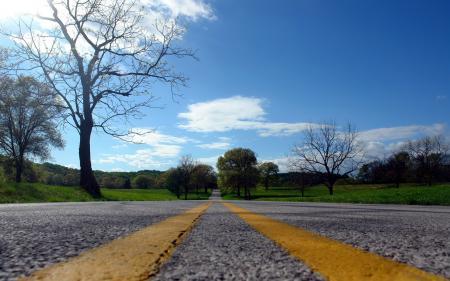 Фотографии дорога, дерево, пейзаж