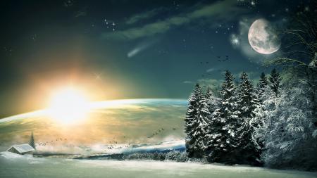 Фотографии зима, луна, лес