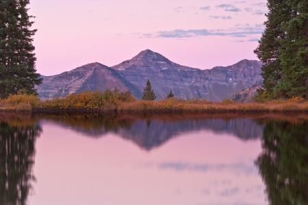 Обои горы, лес, озеро, розовое утро