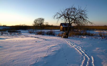 Фотографии зима, утро, снег, дом