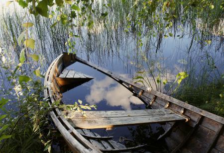 Фотографии вода, пруд, озеро, трава