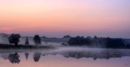 Обои туман, пруд, рассвет, лес