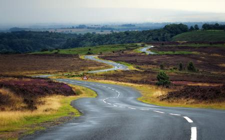Фотографии дорога, поле, пейзаж