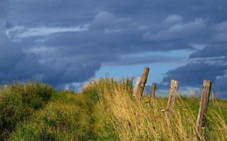 Заставки поле, небо, забор, трава