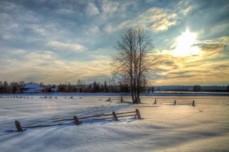 Обои зима, Россия, снег, дерево