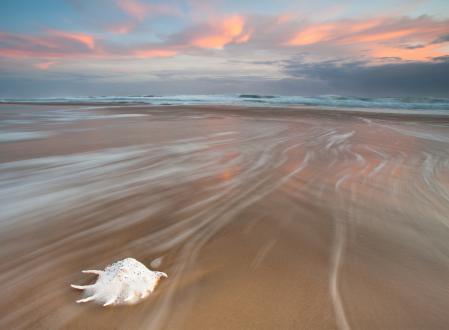 Фото море, пляж, волны, раковина