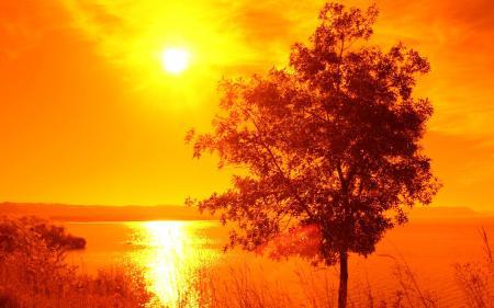 Фотографии Озеро, Вода, Берег, Трава