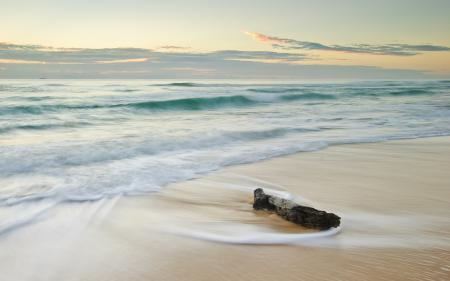 Фото коряга, море, волны, небо