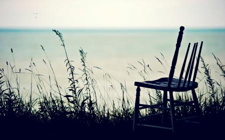 Фото стул, трава, горизонт, птицы
