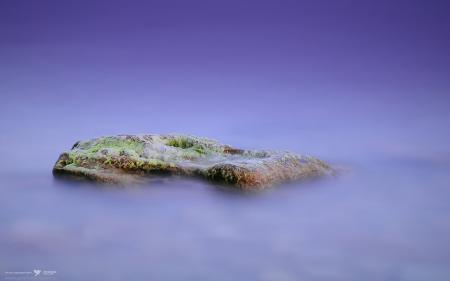 Заставки камень, водоросли, море