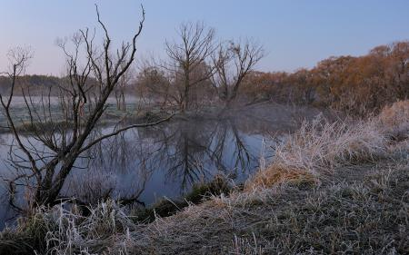 Фото зима, река, иней, пейзаж