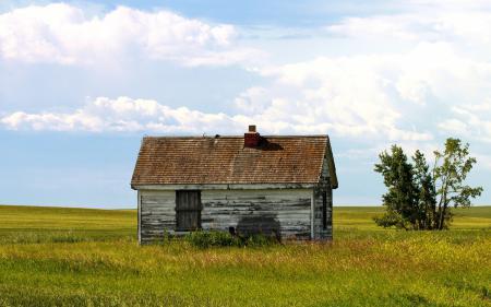 Обои поле, дом, лето, пейзаж