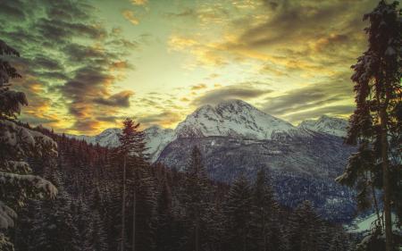 Заставки winter, sky, зима, лес