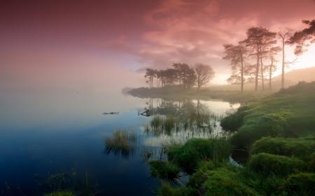 Фотографии озеро, деревья, туман, закат
