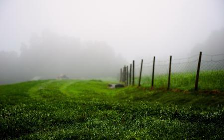 Картинки поле, туман, забор