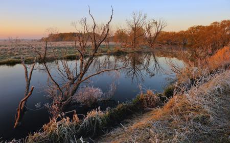 Картинки река, закат, трава, иней