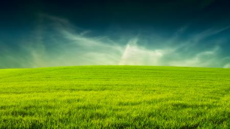 Картинки трава, небо, простор