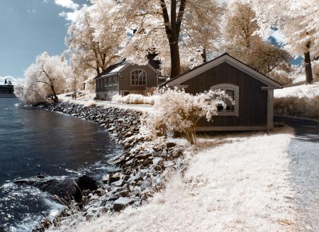 Фото цвет, деревья, домики, река