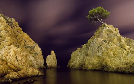 Фотографии ночь, звезды, скалы, дерево