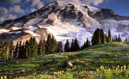 Заставки деревья, горы, небо, облака
