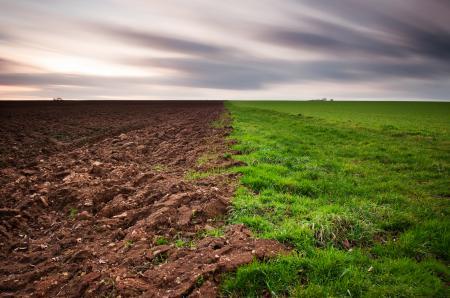 Заставки поле, горизонт, вспаханое, зеленое