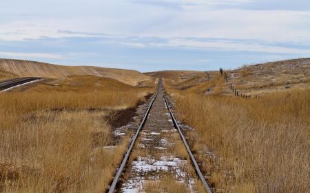 Фото дорога, поле, осень, пейзаж