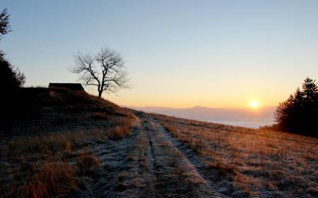 Фото утро, небо, солнце, природа