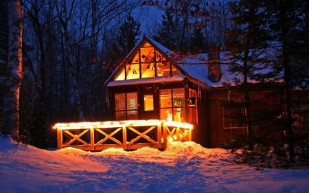 Фотографии Зима, снег, ночь, лес