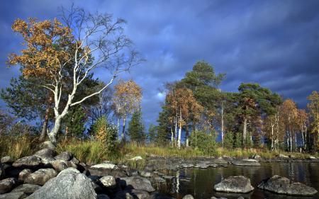 Картинки река, камни, деревья, лето