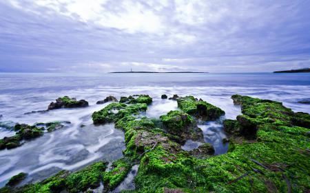 Фотографии море, небо, камни, водоросли