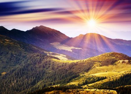 Заставки горы, деревья, холмы, зелень