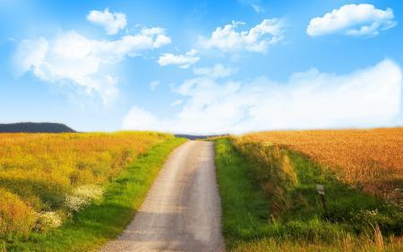 Обои дорога, облака, поле, небо