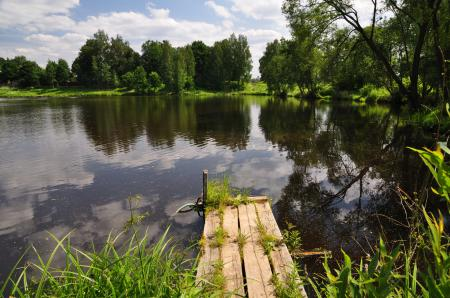 Картинки пруд, вода, мостик, деревья